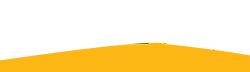 Logo Vigour